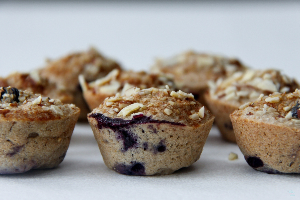 Blueberry Banana Oatmeal Bites