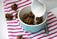 "Chocolate Chip Cookie Bites ""cereal""  (No protein powder, dark chocolate chips, dropped into small balls)"
