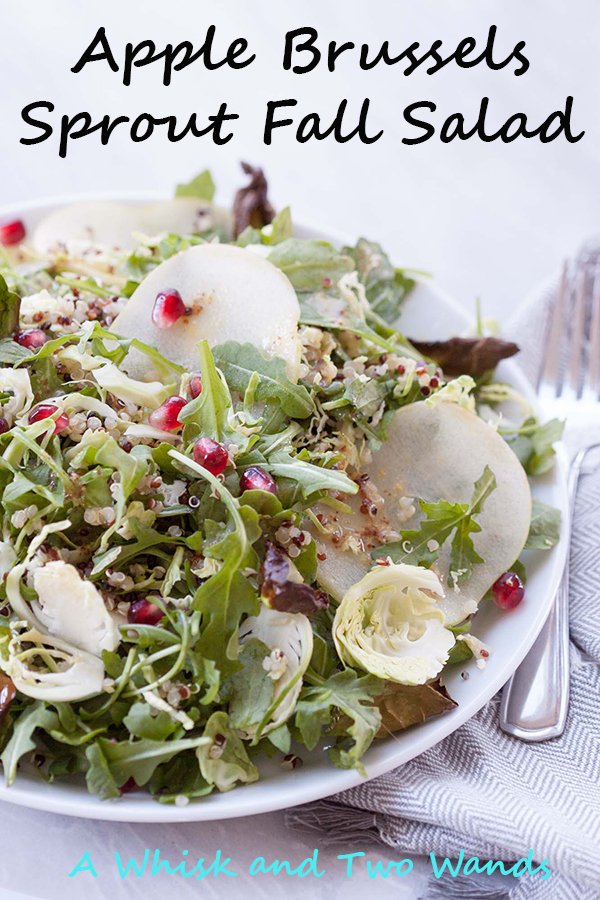 Apple Brussels Sprout Fall Salad is packed with flavor and nutrition pairing shaved and roasted brussels, arugula, apples, pomegranates and more! Perfect for a main dish salad, side dish, or even a salad to bring to Thanksgiving or any get together. Vegan and gluten free friendly.