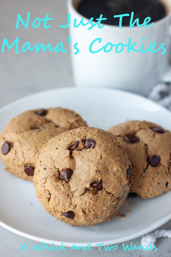 Not Just The Mama's Cookies are delicious chocolate chip cookies with added nutritional benefits for breastfeeding mamas that the whole family can't keep their hands off of! Made with simple whole food ingredients these healthy cookies are gluten free and vegan friendly.